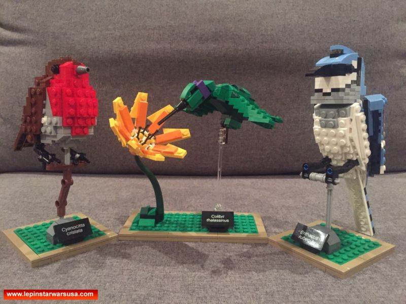 Review LEPIN 36009 Birds – Compatible LEGO 21301